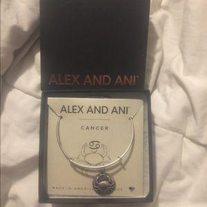 Alex and Ani bracelet Cancer Zodiac Sign